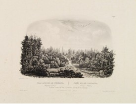 BODMER, K. -  Forest scene on the Tobihanna; Alleghany Mountains.