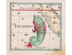 BERNDT, J. C. -  Delphinus.