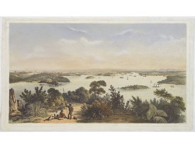 ANGAS, G.F. -  (The City And Harbour Of Sydney From Near Vaucluse.)